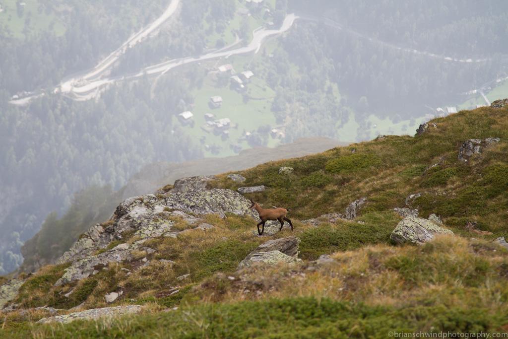 Adventure, Europe, Haute Route, Hiking, Mountains, Sports, Switzerland, event