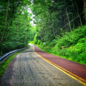 The Long and Winding Road-Ledgedale Road, Greentown, PA