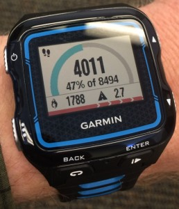 Garmin 920xt Daily Step Activity
